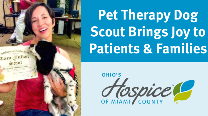 Pet Therapy Dog Scout Brings Joy To Patients & Families